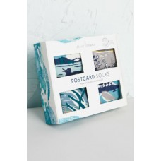 SEASALT Postcard Box O Socks Idyllic Isles Mix