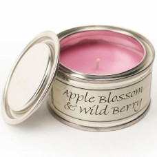 Paint Pot Candle Apple Blossom And Wild Berry