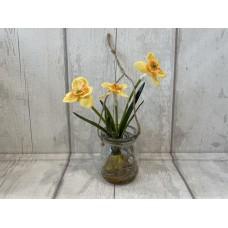 Hanging Daffodil Bulb in Glass Jar