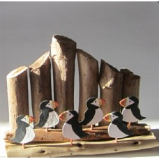 Six Puffins With Groynes