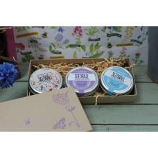 Seedball Gift Box