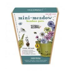 Mini Meadow Bamboo Pots Garden Meadow Mix