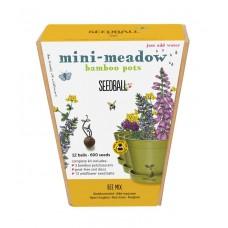 Mini Meadow Bamboo Pots Bee Mix