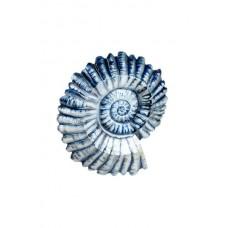 Silver & Indigo Ammonite Wall Art